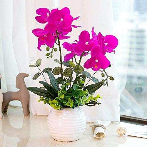 Homeseasons Led Lighted Artificial Orchid Arrangement